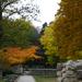 Út az őszbe
