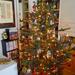 Családi karácsonyfánk fényei