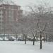 Sűrűn hullott a hó!