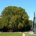 Centenáriumi emlékmű