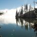 Csorba-tó fenyő