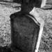 Album - A sváb temető Nagykovácsiban/zord idők blog