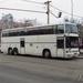 Magyar Magántársaságok buszai
