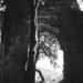 kolostorrom 1993