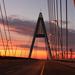 Napkelte a Megyeri hídon
