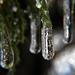 Jégcsapok