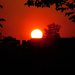 Naplemente/Sunset