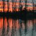 bíbor színű hajnal