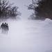 hó Ancsin Gábor yf5d1092 jo
