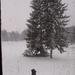 Fotós a hóban