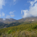 Tongariro Kiérve az erdőből 03