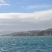 Wellington waterfrontról 01