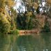 Tisza-tó, Tiszafüred és környéke!