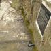 GePaRdLaCeE: P4100179 - indafoto.hu