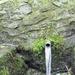 GePaRdLaCeE: P5190330 (Custom) - indafoto.hu