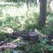 GePaRdLaCeE: P9120634 (Custom) - indafoto.hu