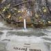 GePaRdLaCeE: P9300931 (Egyedi) - indafoto.hu