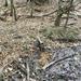 GePaRdLaCeE: P9300953 (Egyedi) - indafoto.hu