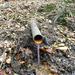 GePaRdLaCeE: P9300957 (Egyedi) - indafoto.hu