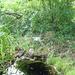 GePaRdLaCeE: P8130174 (Egyedi) - indafoto.hu