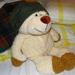 Sapkás medve