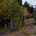 US 2010 Day27  004 Great Basin NP, NV