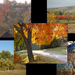 Szada-ősz-kollázs