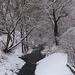 Szokolya - Morgó patak 1