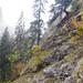 Bärenschützklamm - Medvesétány - hegyoldal
