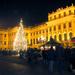 Schoenbrunner Weihnachtsmarkt