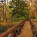 Alcsúti arborétum - híd a Grottától