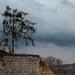 Pécsi szénbányák szénosztályozója (már elbontva) 3