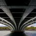 Rhone a Pont de l'Universiténél