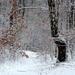 03 Hahó! Itt a hó