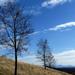 02 Tavaszi táj