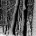 01 Tél a Karancson