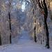 09 Tél a Karancson