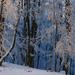 10 Tél a Karancson