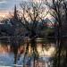 madaras tó