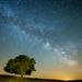 Gyűjtemény - csillagok