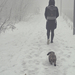 Ködös téli séta