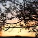 Pilis, tavasz, naplemente