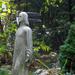 Egy rejtőzködő Krisztus szobor a Pipacs utcában.