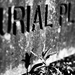 Album - Burial Place