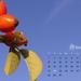 októberi csipkebogyó