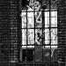 ablaksz