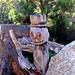 fából faragott túrista
