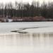 folyócska a tó közepén..