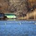 Erőmű-tó