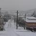 2012 - Tél - Első hó (Karancsalja)